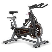 Horizon Fitness Indoor Bike