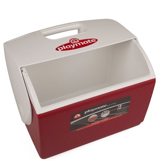 Igloo™ große Betreuer-Eisbox Ohne Inhalt