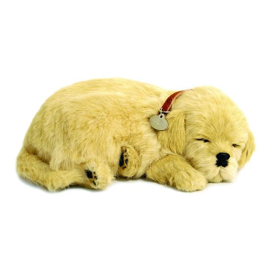 Perfect Petzzz® Schlafende Welpen Golden Retriever