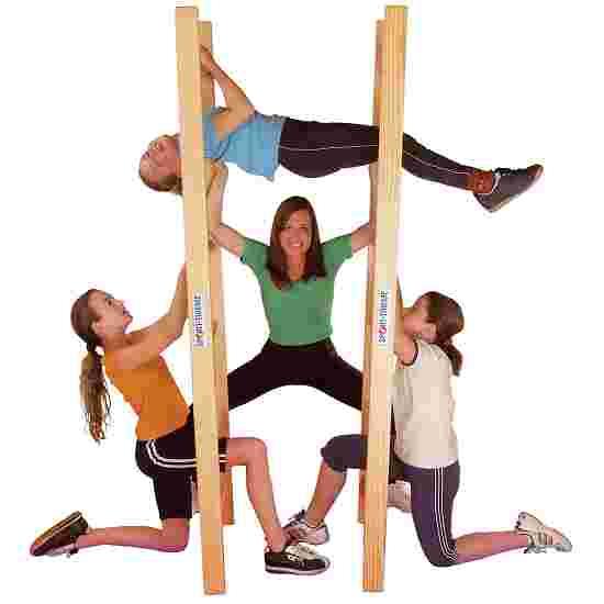 Sport-Thieme Akrobatikleiter
