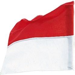 Sport-Thieme Fahne für Grenzstange bis ø 30 mm Neongelb