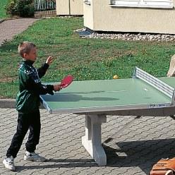 """Ersatz-Tischtennis-Plattenhälfte """"Premium"""""""