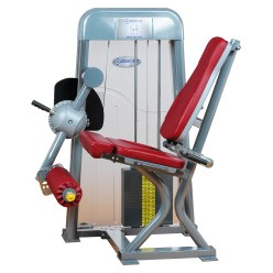 Ergo-Fit® Leg extension 4000