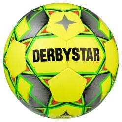 """Derbystar Futsalball  """"Basic Pro S-Light"""""""